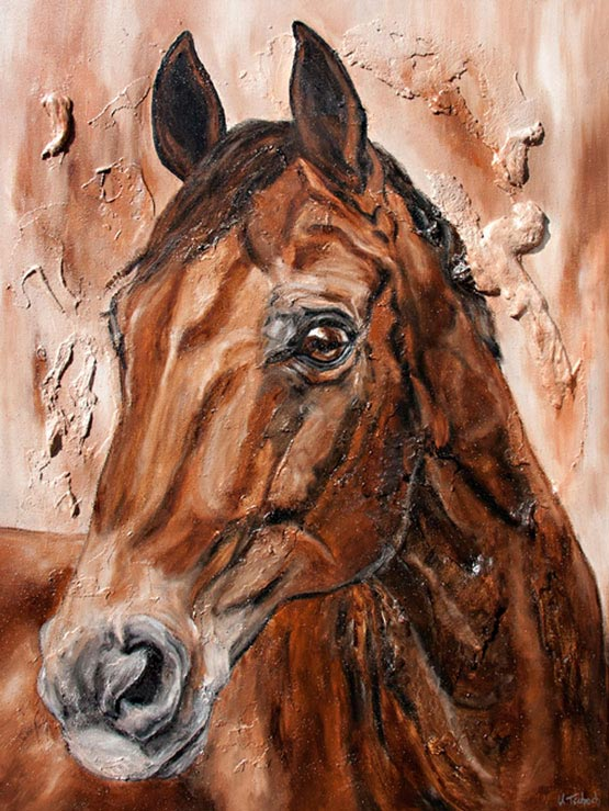 Horse Portrait commissioned work