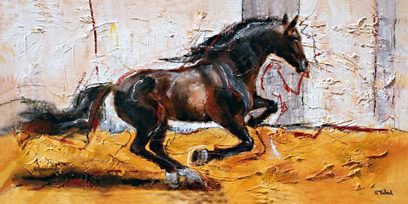 Horse canter painting