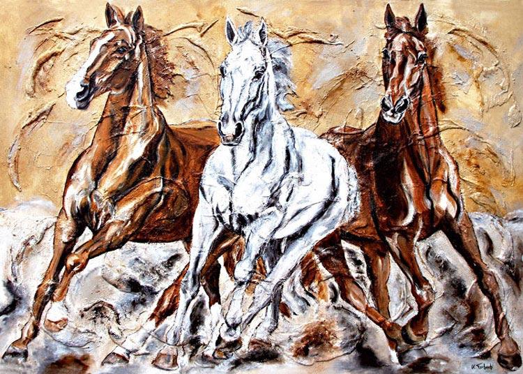 Horse Herd Warmblood Horses